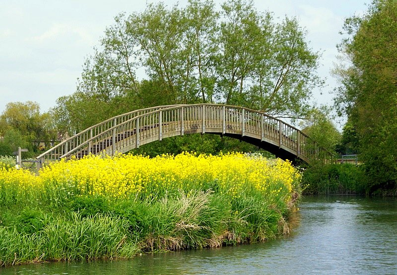 Bloomers Hole Footbridge
